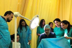 hands-on training in cosmetic gynecology (2)
